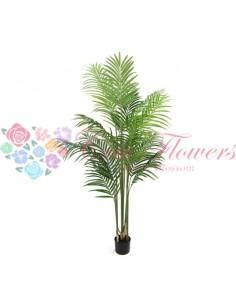 Palmier Areca Artificial 160cm PT001