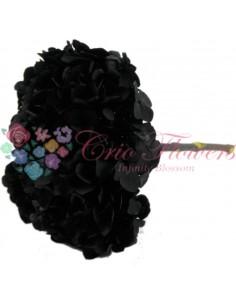 Hortensie Criogenata Negru