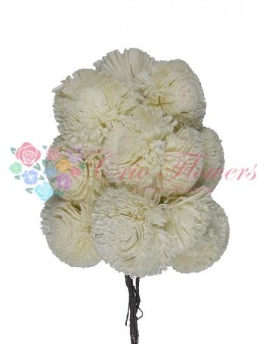 Crizantema Ming Natur