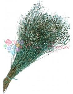 Crengute Uscate Decorative Verde