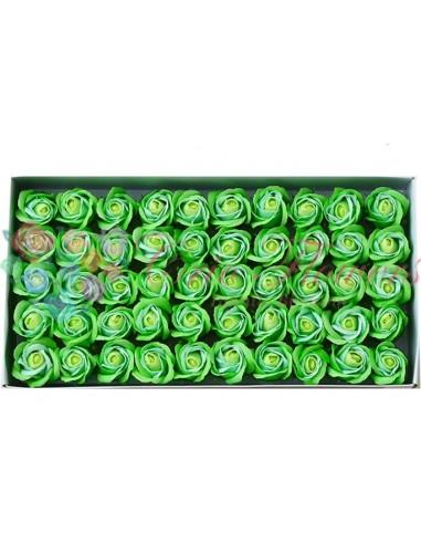 Trandafiri Sapun Bicolor Verde/VerdeDeschis