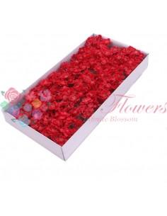 Flori Cires Sapun Rosu