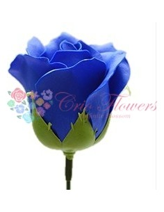 Trandafiri sapun Albastru