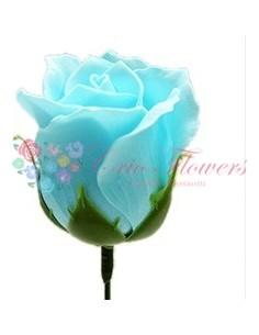 Trandafiri Sapun Bleo