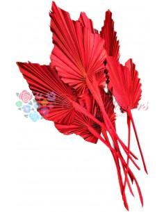Frunze de Palmier Mini Rosu