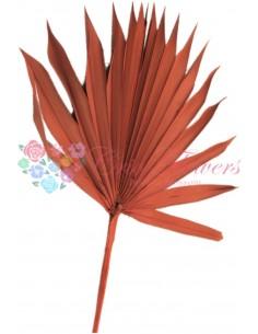 Frunze de Palmier Soare Portocaliu