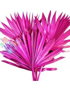 Frunze de Palmier Soare Roz