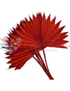 Frunze de Palmier Soare Rosu