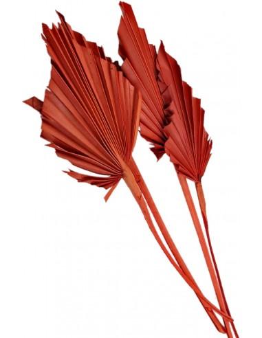 Frunze de Palmier Mini Portocaliu