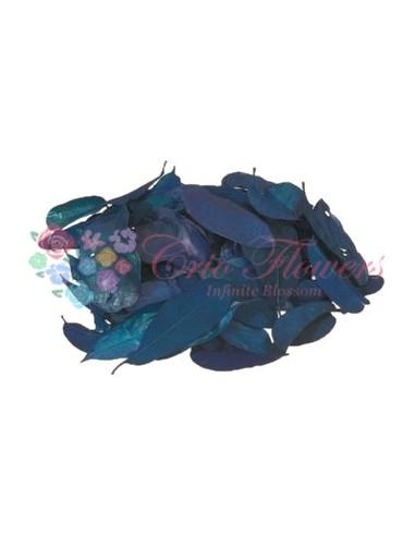 Frunze Mandioca Criogenate Albastre