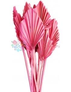 Frunze de Palmier Mini Roz Pal