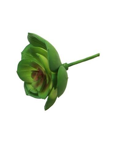 Suculent Echeveria Artificial Verde