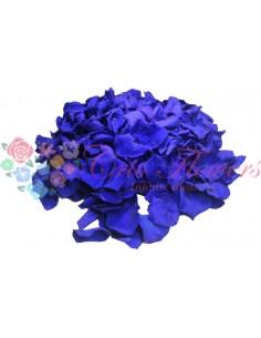 Petals 100gr Blu03