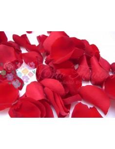 Petals 100gr Pin03