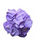 Petals 100gr Vio01