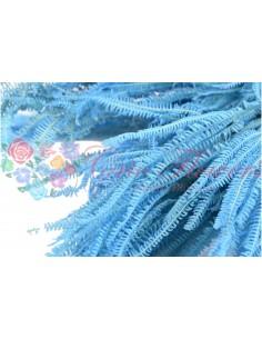 Feriga Pteridium Criogenata Bleo