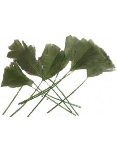 Pene Lungi Verde Inchis