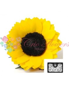 Floarea Soarelui Criogenata Galben XLYel02