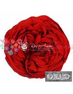 Trandafiri Gradina Criogenati Rosu KabukyzaRed02