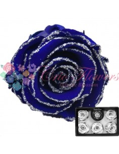 Trandafiri Criogenati Albastru Sclipici XLGBlu03