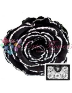 Trandafiri Criogenati Negru Sclipici XLGBla01